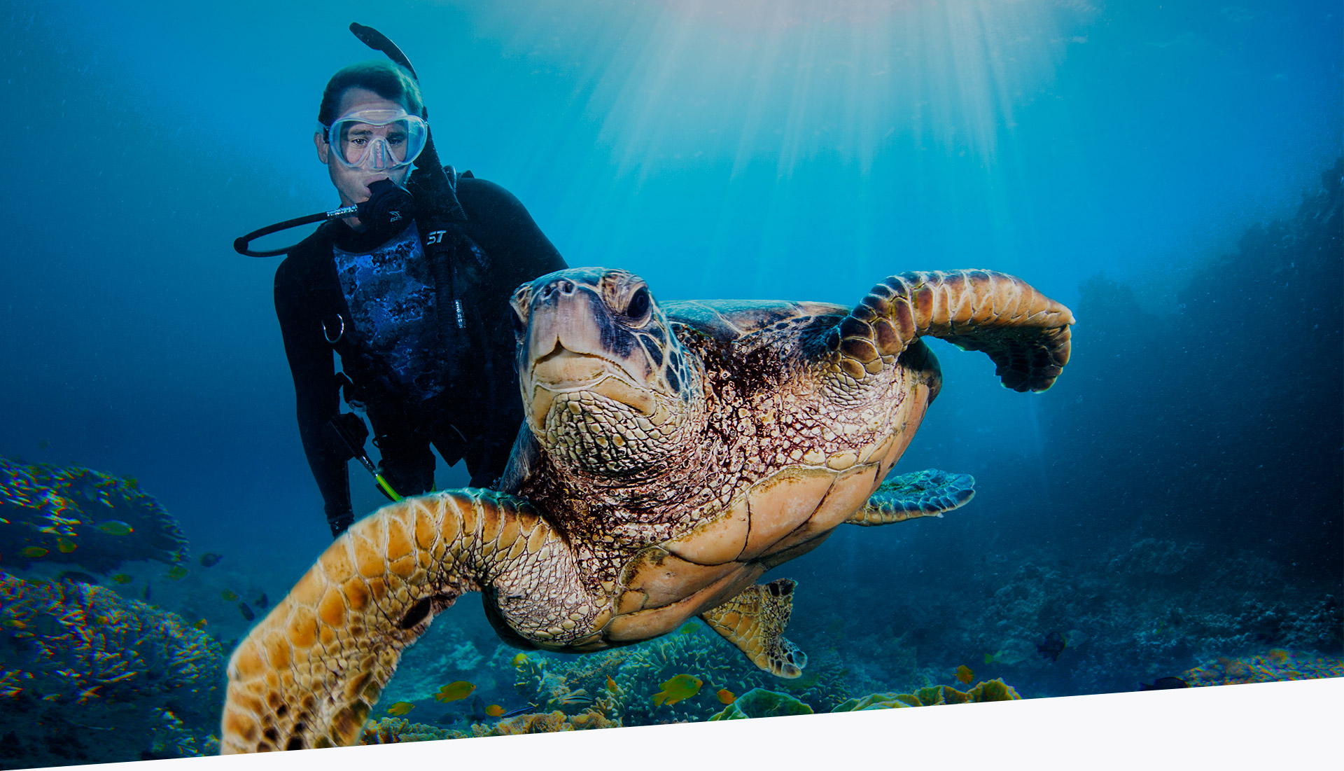 YOUR DIVING ADVENTURE AWAITS